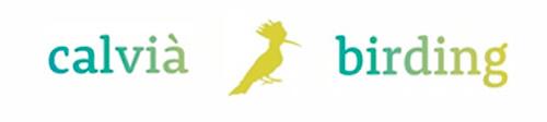 calvia birding